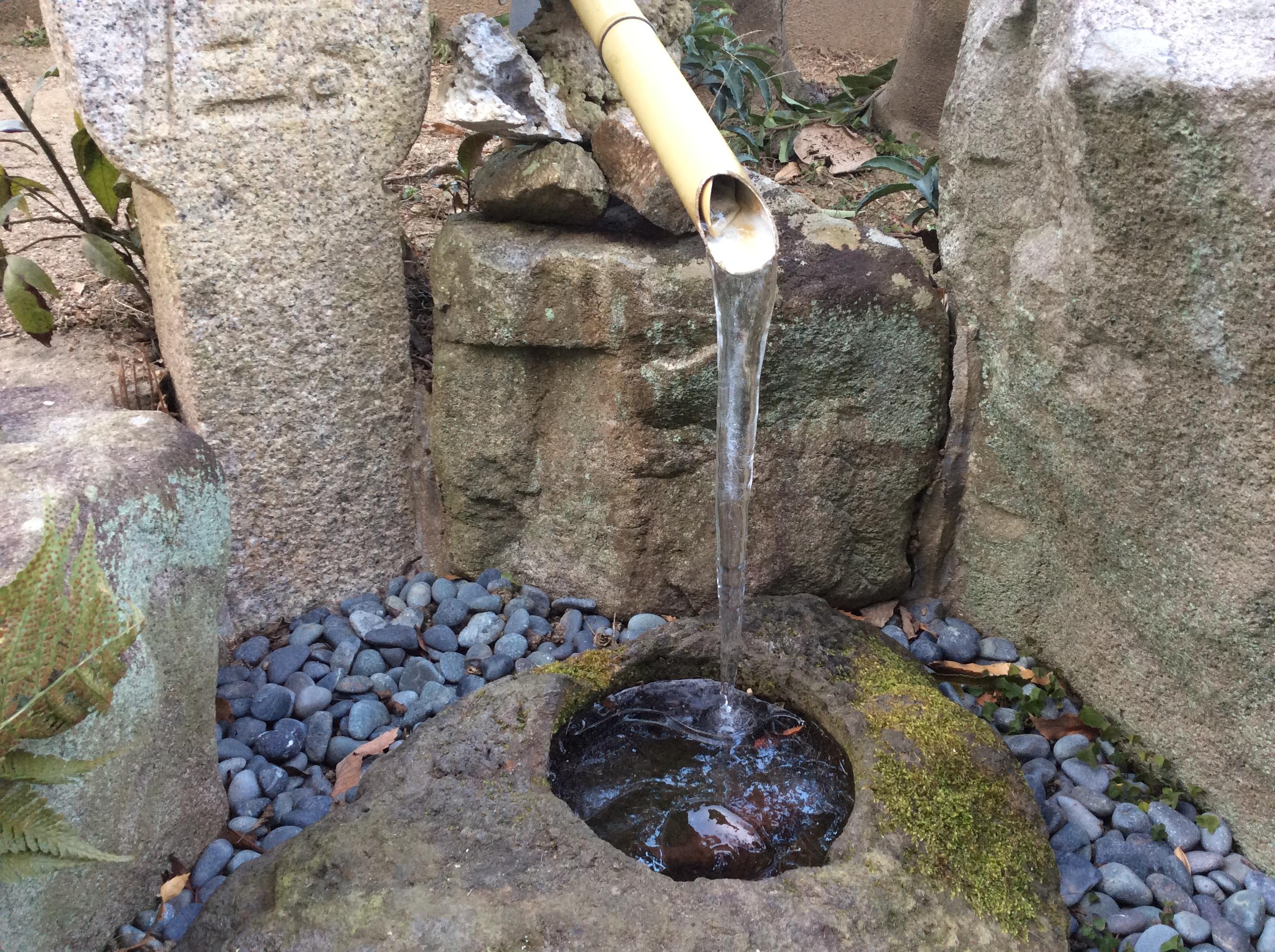 庭の手水鉢